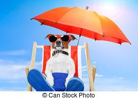 Vacances ete chien vacances banque de photographie csp12289405